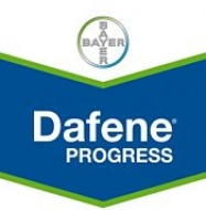 dafene_progress_175