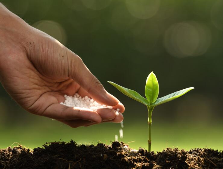 13 de Octubre, Día Mundial de los Fertilizantes