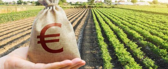 La Junta amplia todo 2021 las lineas de apoyo de hasta 200.000 euros por la COVID