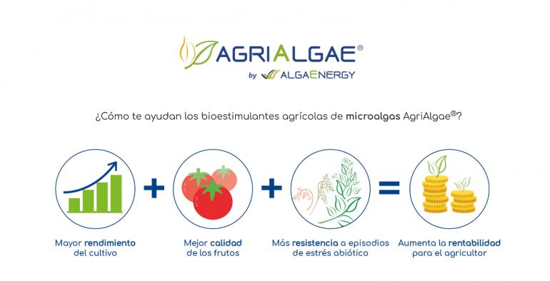 AgriAlgae de AlgaEnergy se une a Prodelesa